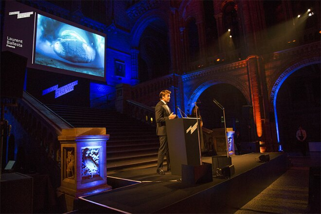 Laurent Ballesta wins the Wildlife Photographer of the Year