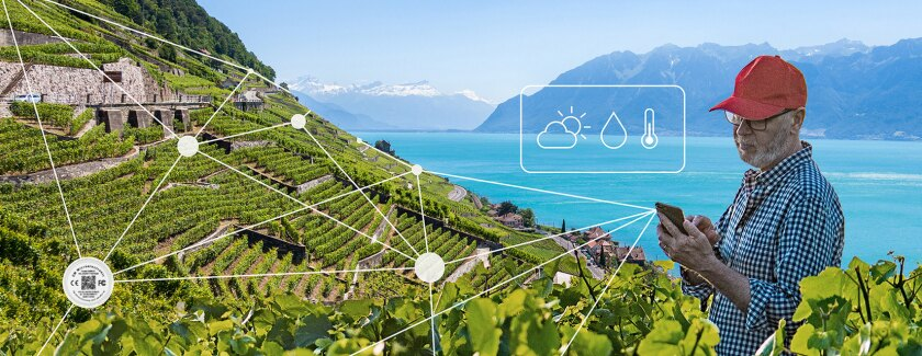 Swiss-designed technology for green wireless IoT sensor networks
