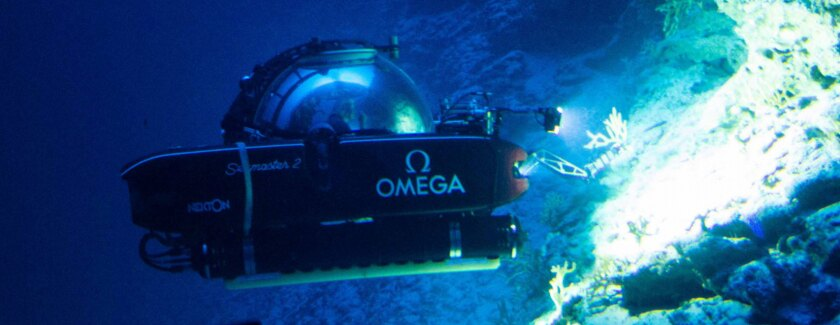 OMEGA is a proud partner of Nekton